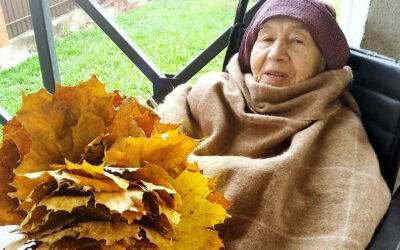 Прогулки для лежачих пожилых людей в пансионате Домашний Уют в Санкт-Петербурге